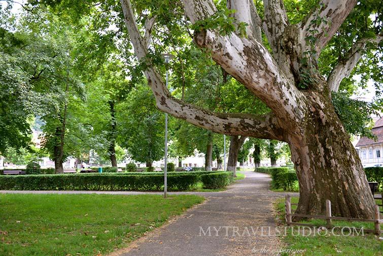 Brasov park