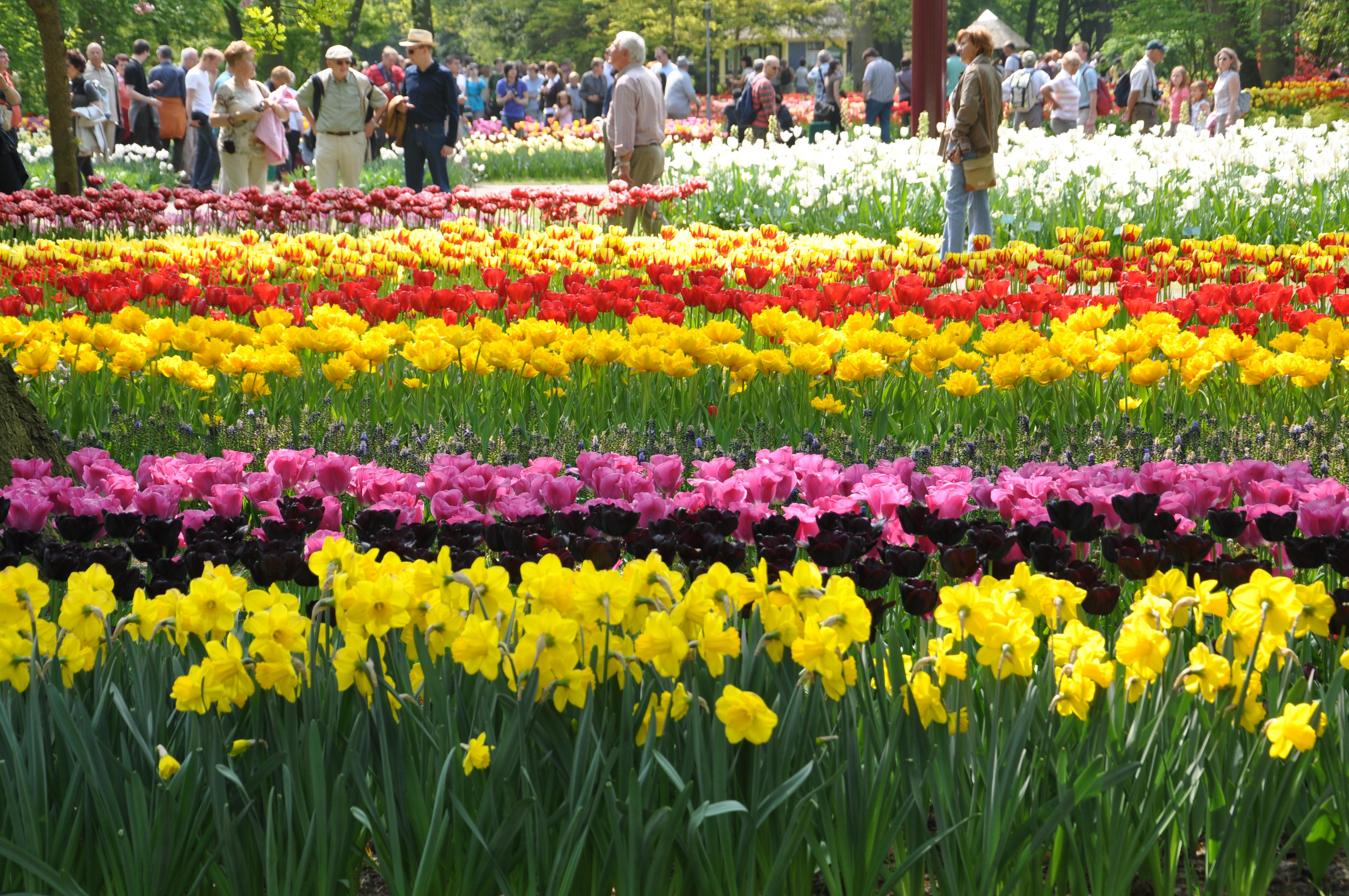 Amazing Gardens Parks Around The World Mytravelstudio