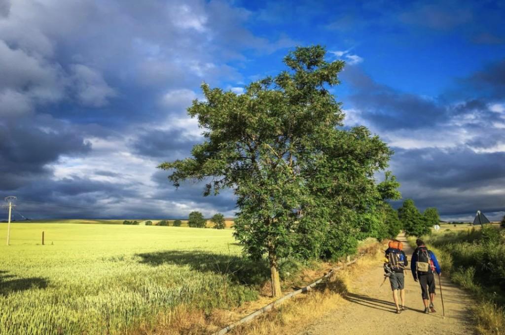 Camino pilgrimage 2